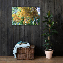 Load image into Gallery viewer, Yellow Tree in Green Forest - Canvas Print