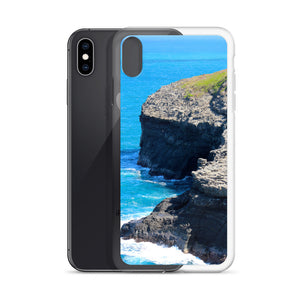 Hawaii Scenic View iPhone Case