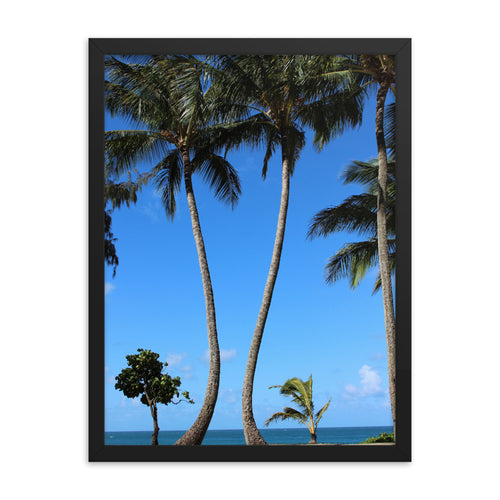 Palm Trees Hawaii Beach - Framed Print