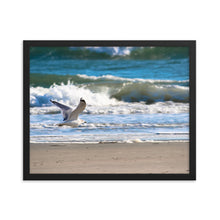 Load image into Gallery viewer, Seagull Flying Beach - Ocean Waves - Framed Print