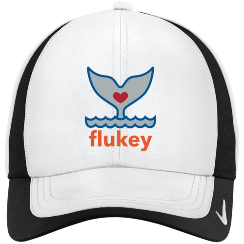 Nike FLUKEYFIED Colorblock Cap (5 colors) - flukeylife, flukey
