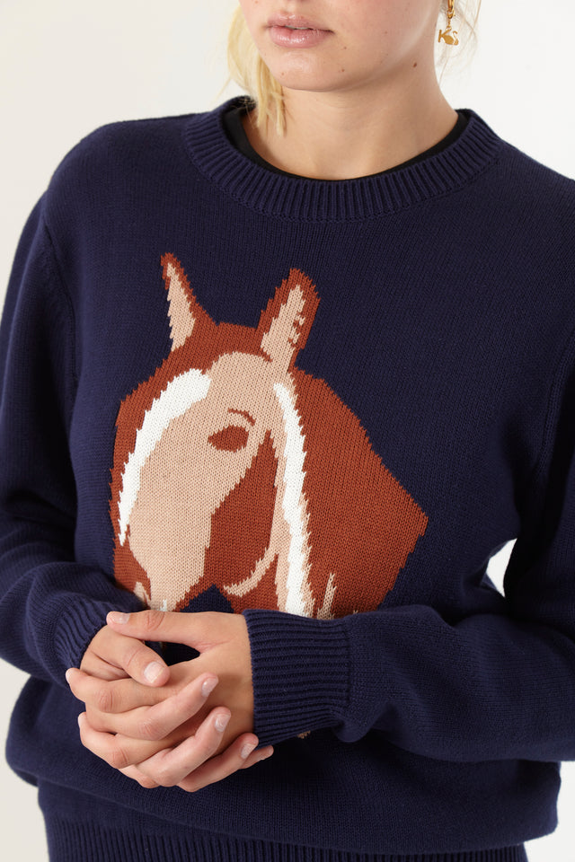 Pony Jumper