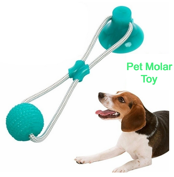 Pet Molar Bite Dog Toy
