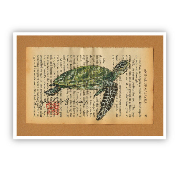 MUOC Malaysia Animal Postcard - Green Turtle