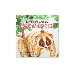 (B. Hon) Borneo Animals - Slow Loris