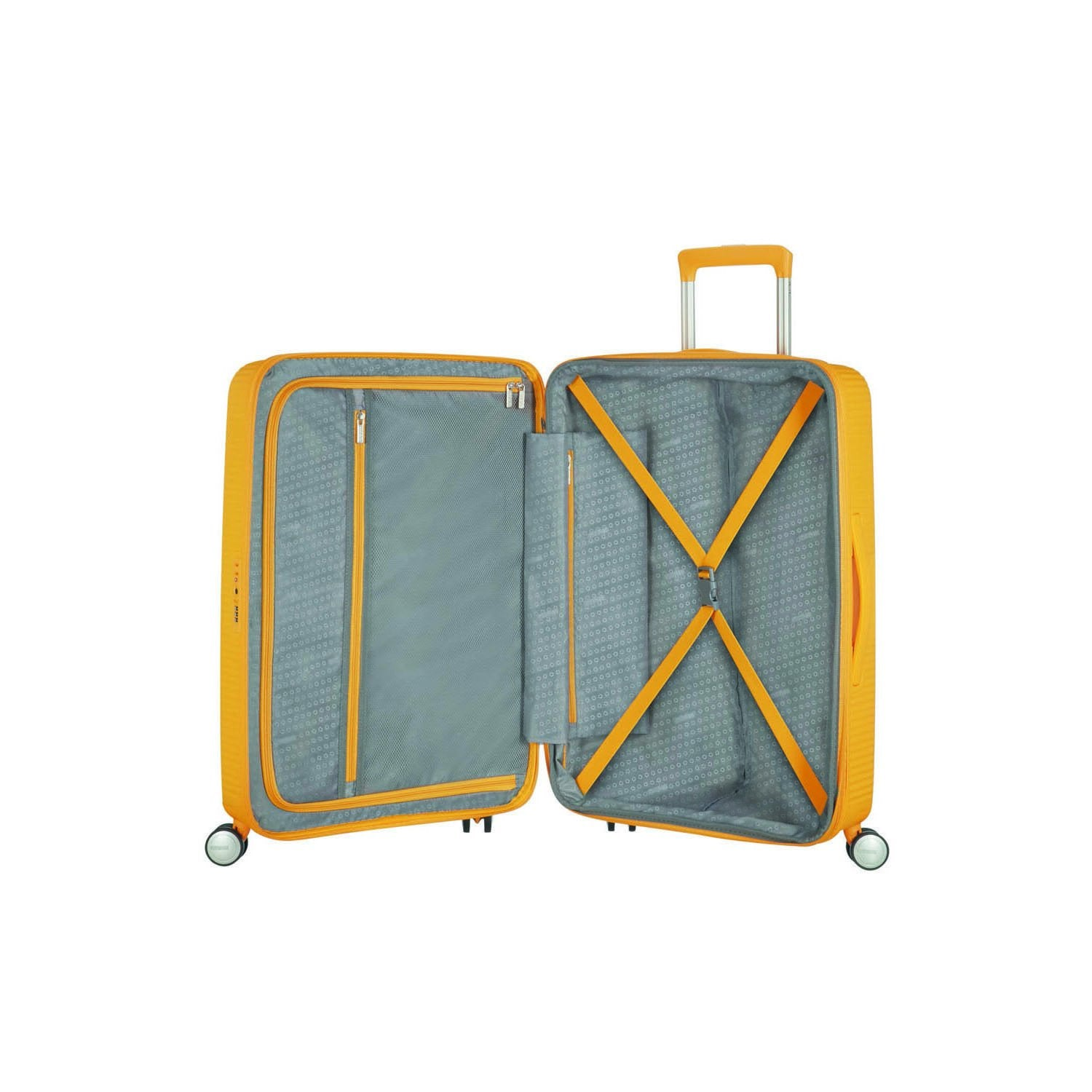 American Tourister Curio Medium Spinner