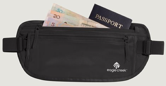 Eagle Creek Silk Money Belt
