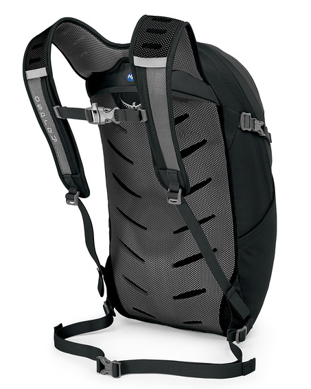 Osprey Daylite Plus 20L Backpack Back View