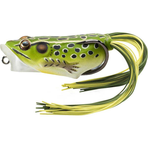 LiveTarget Hollow Body Frog Popper; This is part of the Topwater collection offered from Fishin' My Best Life - fishinmybestlife.com
