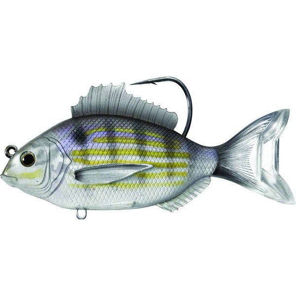 LiveTarget Pinfish Swimbait; This is part of the Swimbaits collection offered from Fishin' My Best Life - fishinmybestlife.com