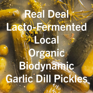 Garlic Dill Pickle Ferment