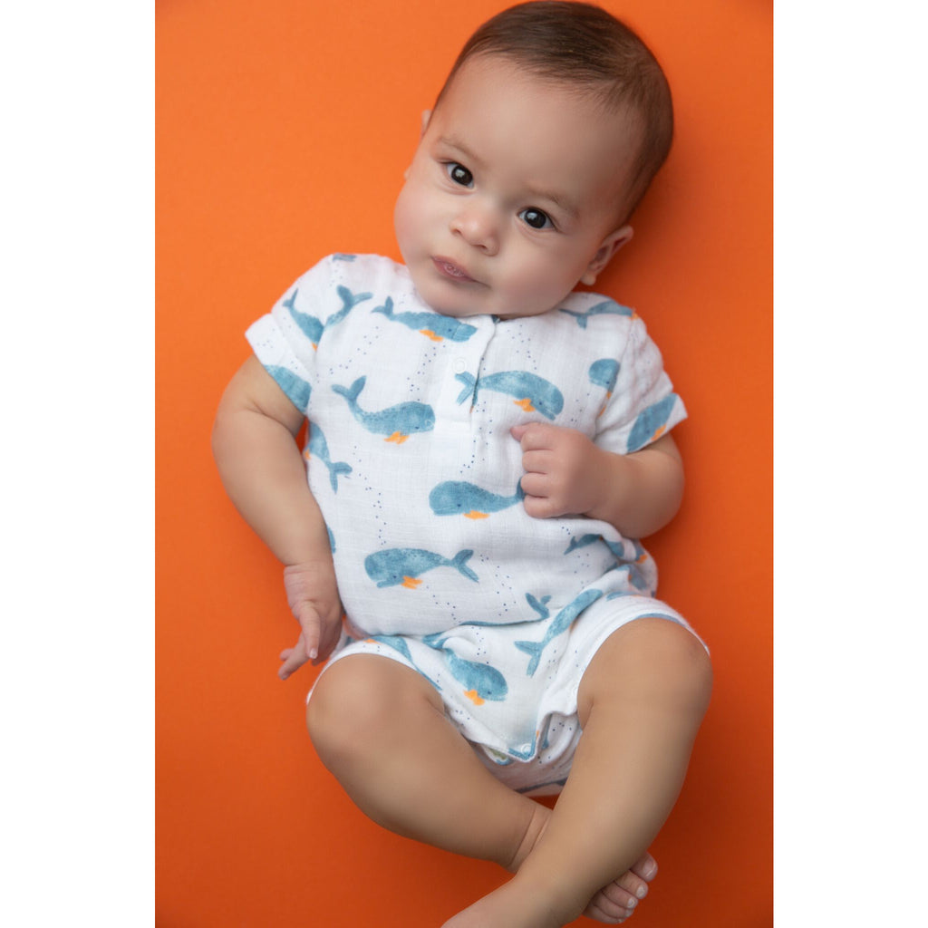 Henley Shortall - Baby Whale