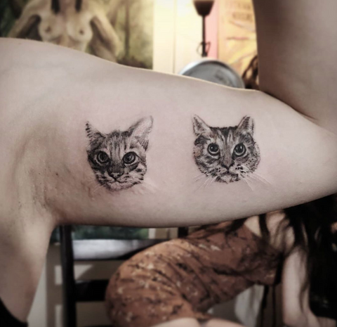 House Cat Pet Portrait Tattoo