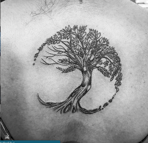 Tree Of Life Philosophy Tattoo
