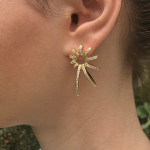 Nautilii, earrings