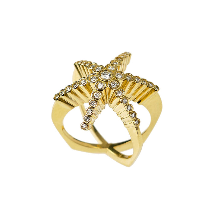Finger hugging Star, ring