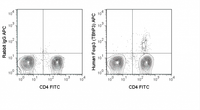 Human peripheral blood lymphocytes were stained with FITC Anti-Human CD4 (35-0047), followed by intracellular staining with 0.05 ug APC Anti-Human Foxp3 (20-4776) (right panel) or 0.05 ug APC Rabbit IgG isotype control (left panel).