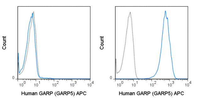 Untransfected (left) or GARP transfected (right) cells were stained with 5 uL (0.5 ug) APC Anti-Human GARP (20-9882) (solid line) or 0.5 ug APC Mouse IgG1 isotype control (dashed line).