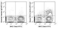 C57Bl/6 splenocytes were stained with FITC Anti-Mouse MHC Class II (35-5321) and 0.25 ug APC-Cy7 Anti-Mouse CD11c (25-0114) (right panel) or 0.25 ug APC-Cy7 Armenian Hamster IgG (left panel).
