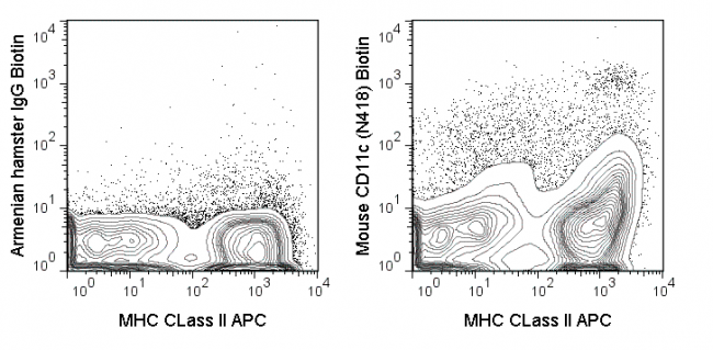 C57Bl/6 splenocytes were stained with APC MHC CLass II and 0.03 ug Biotin Anti-Mouse CD11c (30-0114) (right panel) or 0.03 ug Biotin Armenian hamster IgG isotype control (left panel), followed by Streptavidin PE.