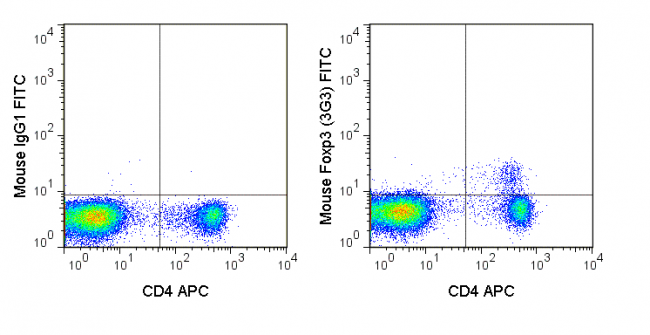 C57Bl/6 splenocytes were stained with APC Anti-Mouse CD4 (20-0041), followed by intracellular staining with 0.015 ug FITC Anti-Mouse Foxp3 (35-5773) (right panel) or 0.015 ug FITC Mouse IgG1 isotype control (left panel).
