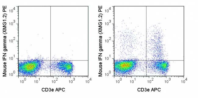 C57Bl/6 splenocytes were stimulated with PMA and Ionomycin (right panel) or unstimulated (left panel) and then stained with APC Anti-Mouse CD3e (20-0031), followed by intracellular staining with 0.125 ug PE Anti-Mouse IFN gamma (50-7311).
