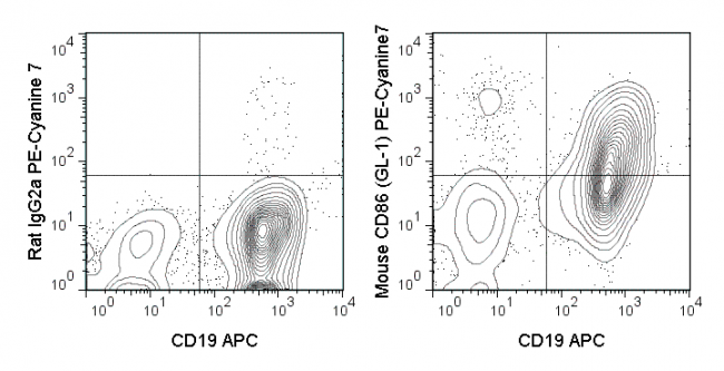 C57Bl/6 splenocytes were stimulated for 3 days with LPS and then stained with APC Anti-Mouse CD19 (20-0193) and 0.25 ug PE-Cyanine7 Anti-Mouse CD86 (60-0862) (right panel) or PE-Cyanine7  Rat IgG2a isotype control (left panel).