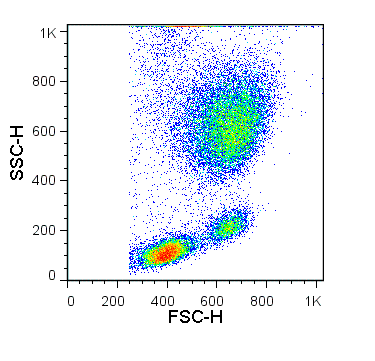 Human peripheral blood cells were lysed with RBC Lysis Buffer (TNB-4300-L100). The scatter profile of lysed cells is shown.