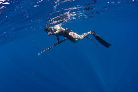 Spearfishing One Day Trip - Fusion Freedive and Spearfishing