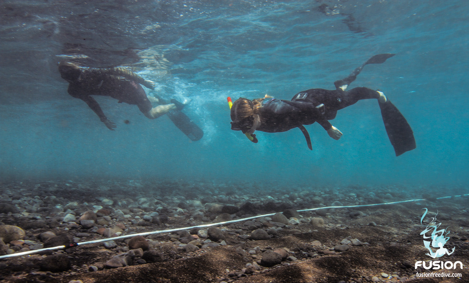 Level 1 Freedive Course - Fusion Freedive and Spearfishing
