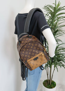 Louis Vuitton Reverse Monogram Palm Springs PM