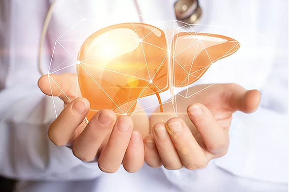 5 cool things about your liver that you didn't know