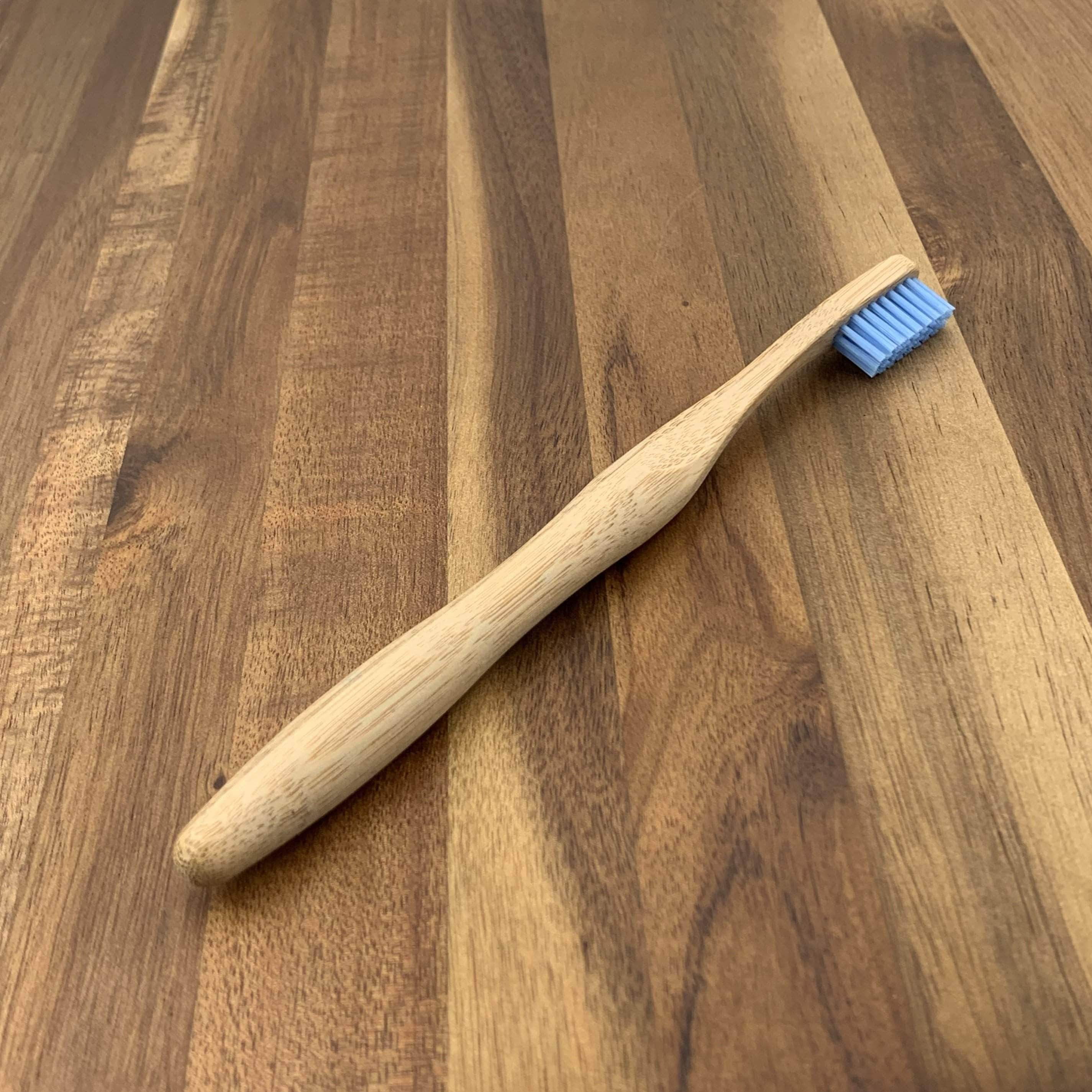 EcoBrushEarth™ Blue Styled Handle Brush - Medium