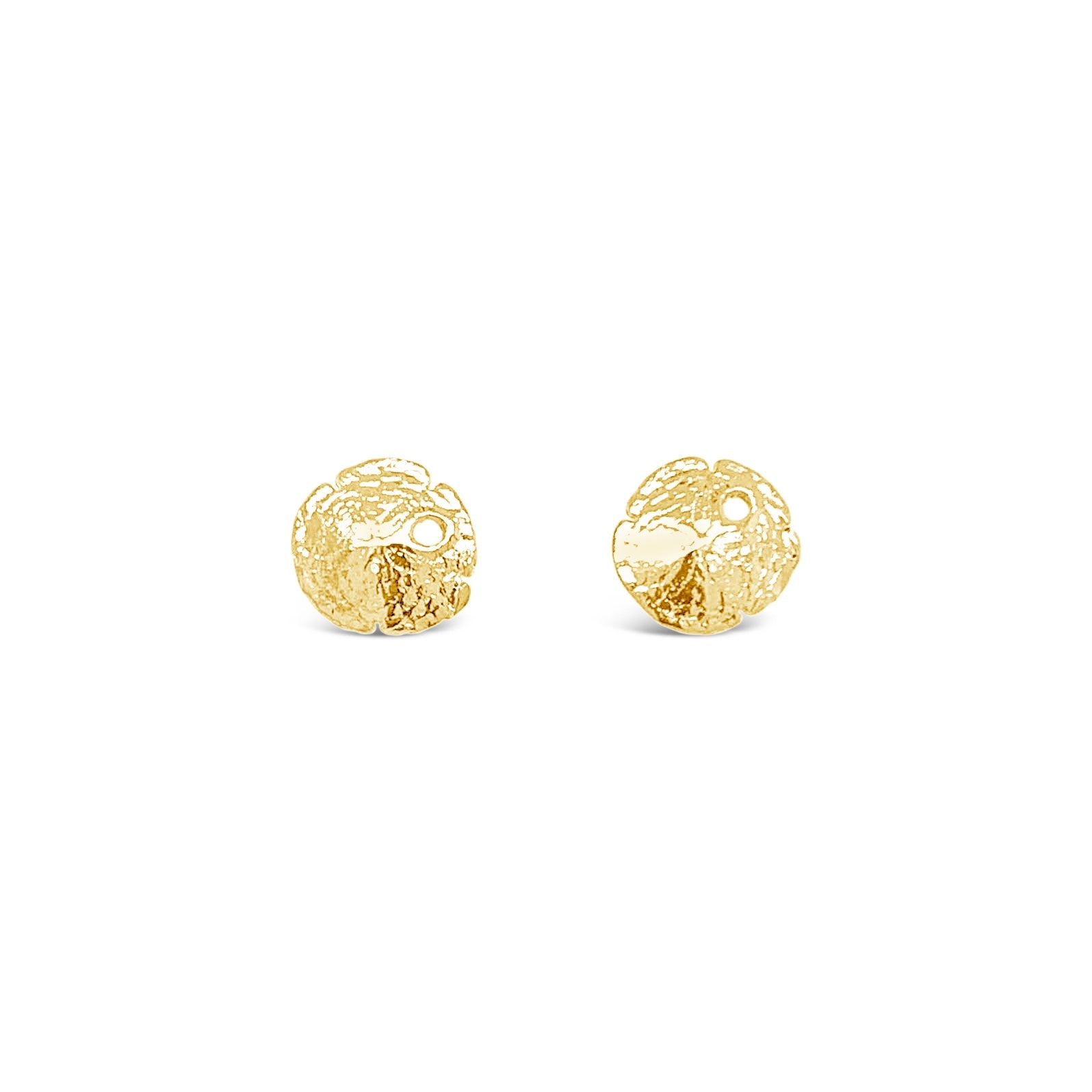 Petite Sand Dollar Earrings