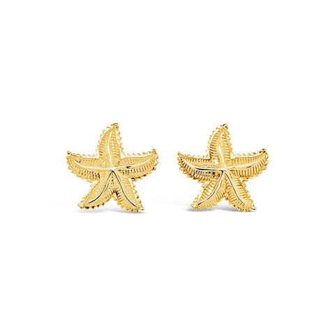 Fluted Starfish Earrings