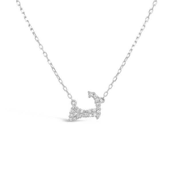 Tiny Diamond Cape Cod Map Necklace