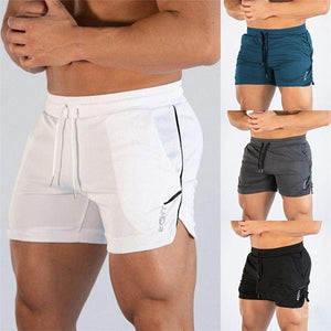Casual Quick Drying Slim Fit Sports Shorts
