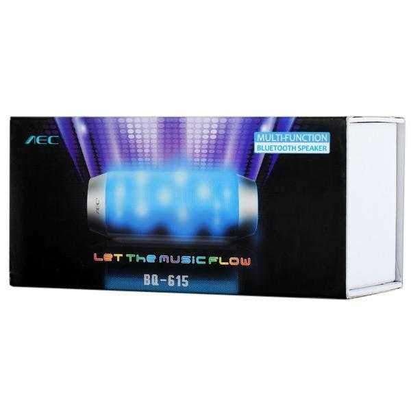 AEC BQ-615 Multi-function Wireless Bluetooth Sound Speaker Built-in FM Radio Support TF Card Input