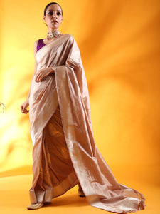 Beige Kataan Silk Saree with Beautiful Butterfly Motifs