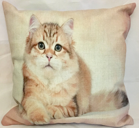 Cute Kitten Tabby Cat Square Cushion with insert