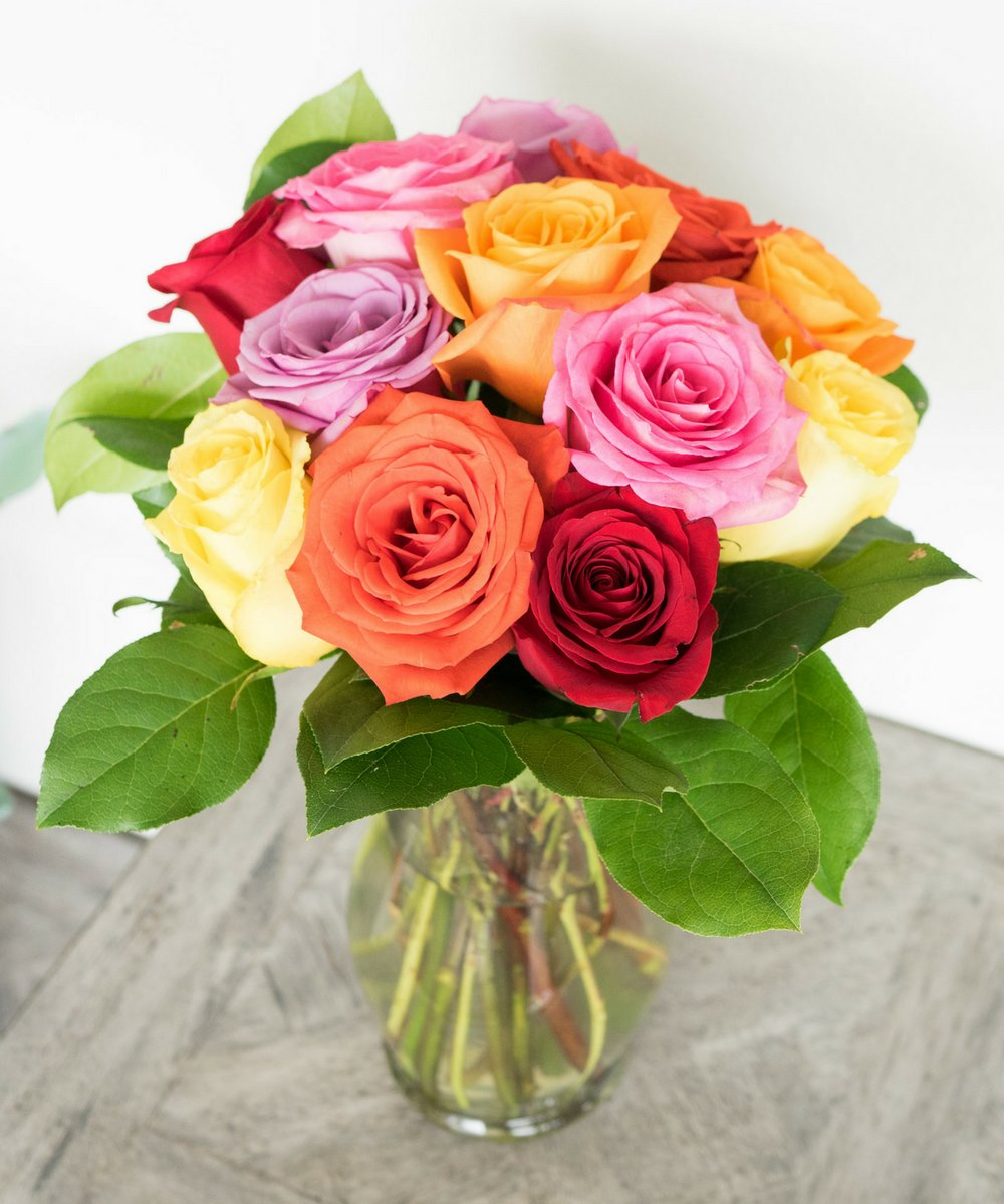 One Dozen Mixed Color Roses - Bizzy Lizzy