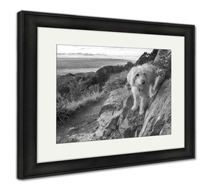 Framed Print, Labradoodle Above The Rio Grande Valley - Bizzy Lizzy