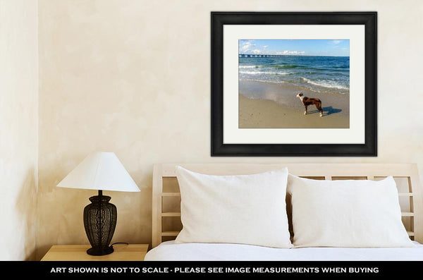 Framed Print, Border Collie At The Beach - Bizzy Lizzy