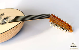 Turkish Professional Electric Oud AOK-206G - Sala Muzik