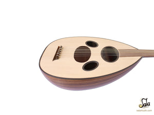 Oud instrument
