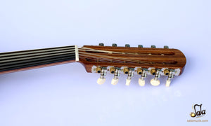 mechanic pegs electric oud