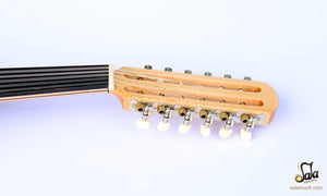 Pegs of Electric oud