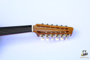 Electric oud with guitar pegs