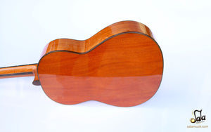 bowl of fretless guitar