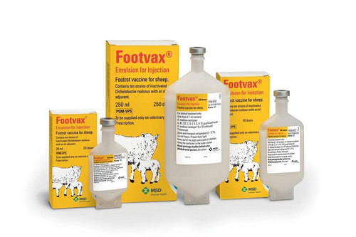 Footvax 20ml PML